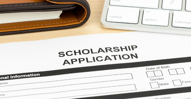 university scholarship application form