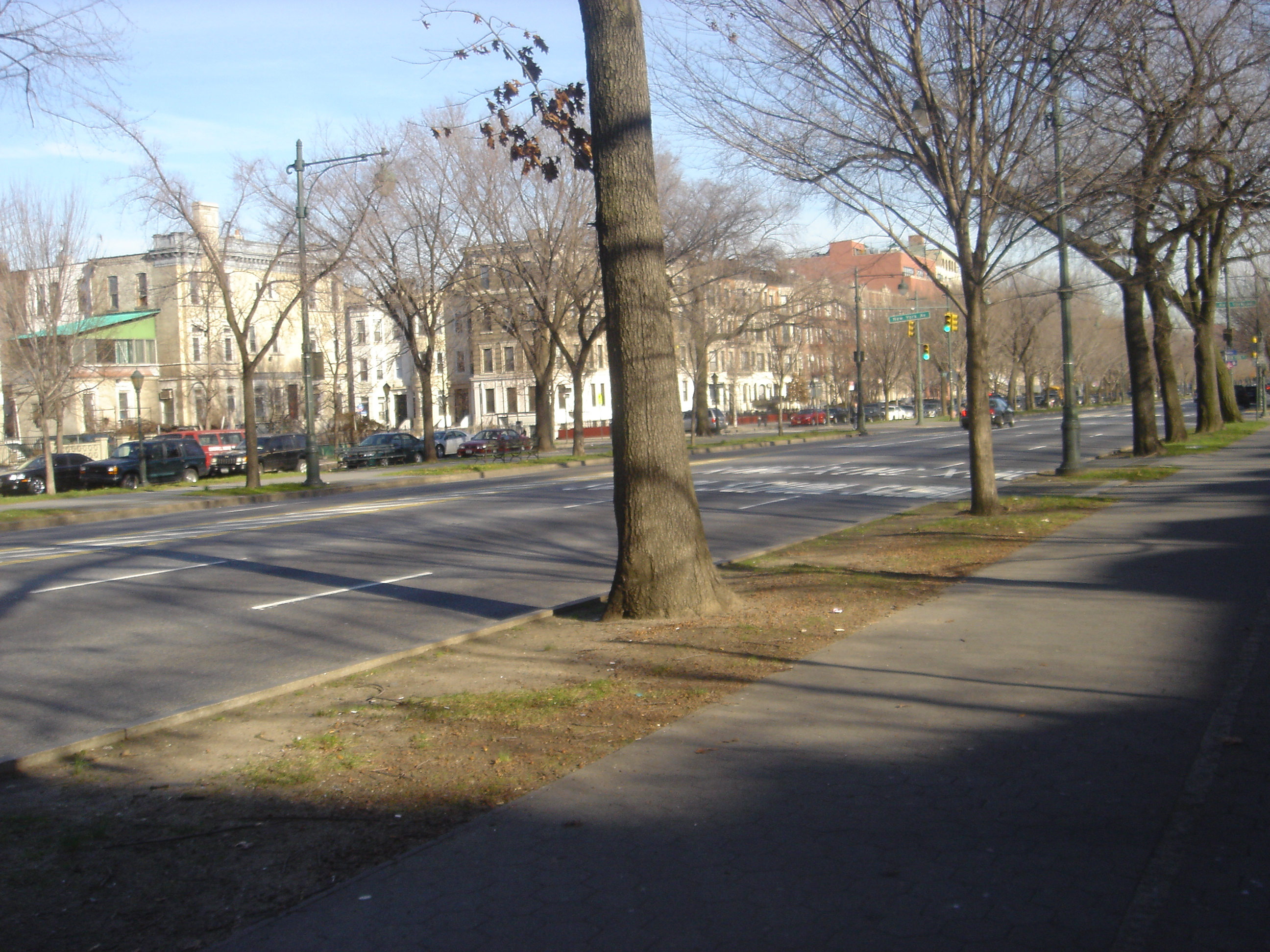 Eastern_Pkwy_west_of_New_York_Ave